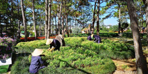 Разрешение на работу во Вьетнаме  work permit